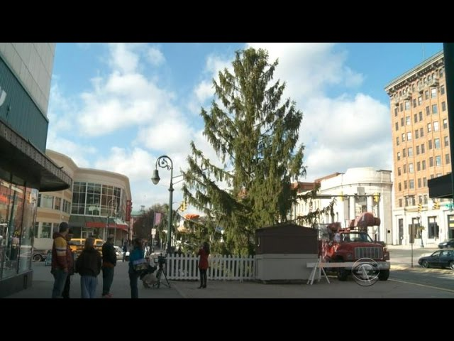 A small Pennsylvania town demands their Christmas tree be taken down