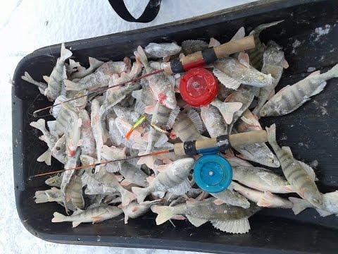 рыбная ловля в братске