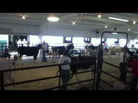 mercer county fair 3