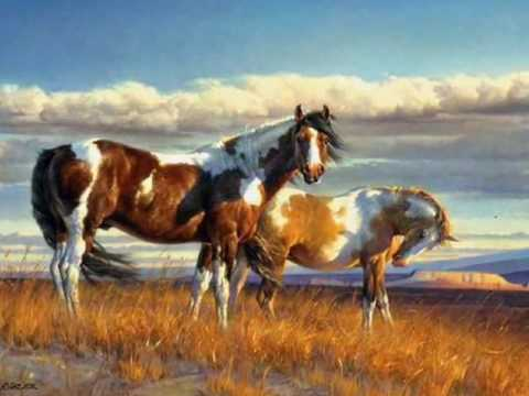 native american indian spirit horses Video