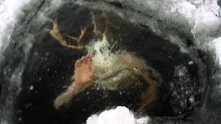 MOST MYSTERIOUS Things Found Frozen In Ice
