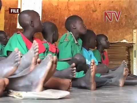 Report pins Tobacco farms on child labour