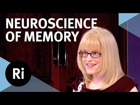 The Neuroscience of Memory - Eleanor Maguire