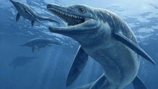 Video clip Top 5 thủy quái khổng lồ đáng sợ nhất thời tiền sử
