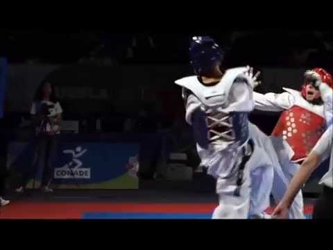 Taekwondo Knockouts 2014 video