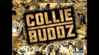 Watch Collie Buddz Gimme Love video