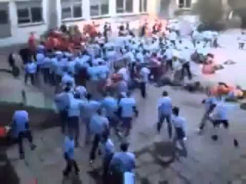 Massive Gang Fight video