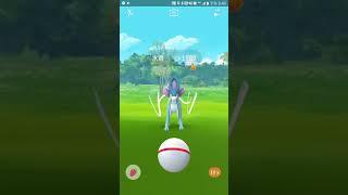 〘Pokémon Go 精靈寶可夢GO〙水君Suicune 一球入魂