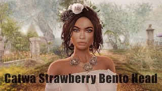 Catwa Strawberry Bento Mesh Head in Second Life