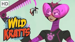 Wild Kratts 💪 Activate Tough Insect Powers!   Kids Videos