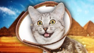 THE CONE OF SHAME | Rock Of Ages II #5