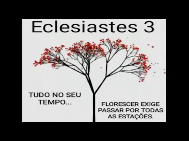 Eclesiastes na Vida Real: Há tempo para todo propósito debaixo do céu.