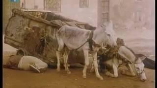 فيلم الباشا (1993) مترجم للغة العبرية - Arabic movie (Elbasha) translated to Hebrew