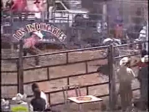 toros en tlayecac  2010 morelos mexico