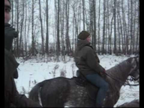 Особенности конных прогулок в зимний период