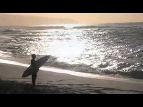 Shane Piasecki - All I Need