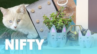 9 DIY Projects For Cat Owners