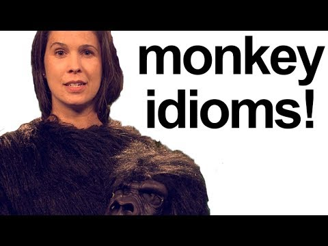How to Pronounce MONKEY IDIOMS!  American English Pronunciation