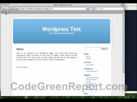 0 Web programmers life. How to build a website with wordpress?
