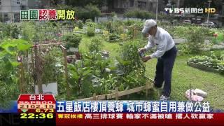 北市「都市菜園」申請起跑 網路登記5月8日公佈
