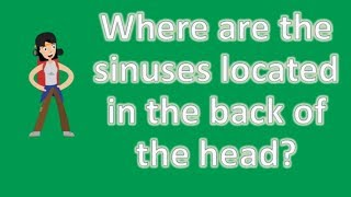 Where are the sinuses located in the back of the head ? | Best Health FAQ Channel