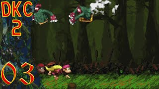 Let's Prey Together DKC2: Diddy's Kong Quest - Welt 3 - Willkommen im heiligen Moor