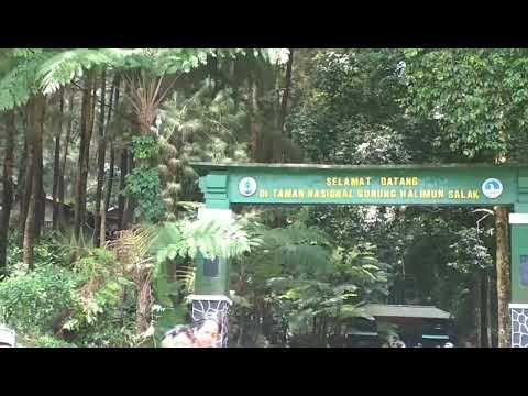 Curug Balong Endah, Taman Nasional Gunung Halimun Salak