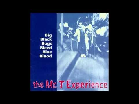 Mr T Experience - Vive La France