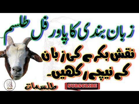 Zaban Bandi Ka Power Full Tilsm || Bakry Ki Zaban Ky Nichy Naqsh Rakhen || By Tilsmat