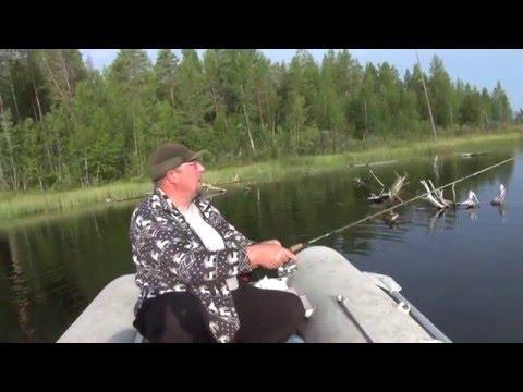 ловля щуки на поппер видео ютуб
