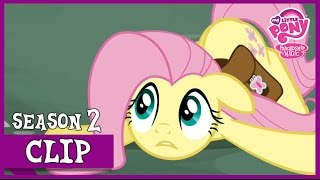Fluttershy The Doormat (Putting Your Hoof Down) | MLP: FiM [HD]