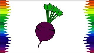 All Clip Of Beetroot Drawing Bhclip Com