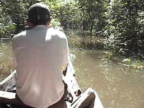 Guainía - Acortando distancias en el río Inírida