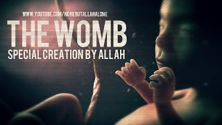 THE WOMB┇ SPECIAL CREATION BY ALLAH ᴴᴰ NBA PRODUCTION