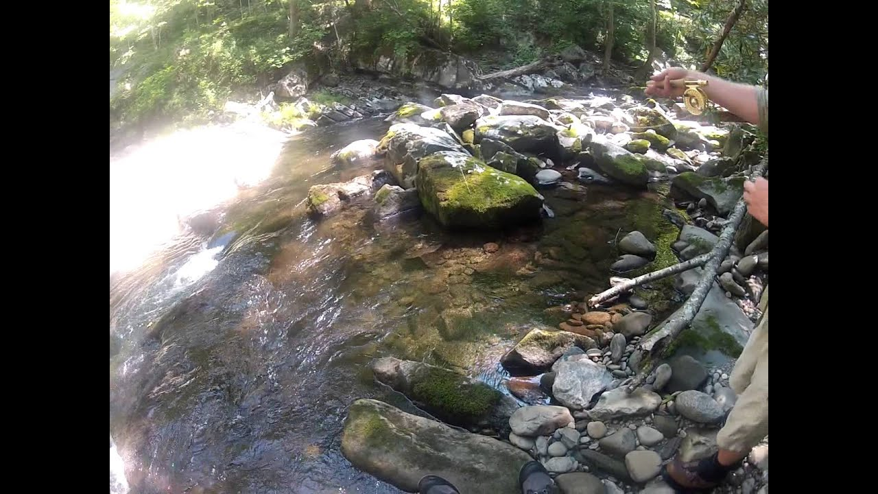 Fly fishing in the smoky mountains in tennessee youtube for Fishing in gatlinburg tn