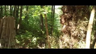 Watch Beck Horrible Fanfare Landslide Exoskeleton video