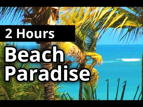 BEACH PARADISE SOUNDS - Relaxing tropical beach paradise for 2 hours - SLEEP SOUNDS + RELAXATION