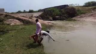Best of Indian Comedy Videos Funny Video Prank 2018 Hindi