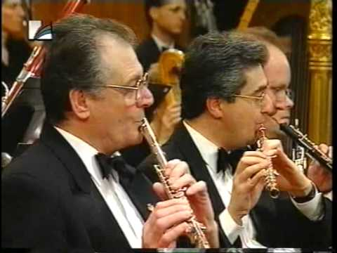 Johnny Gandelsman plays Tchaikovsky Meditation 1994
