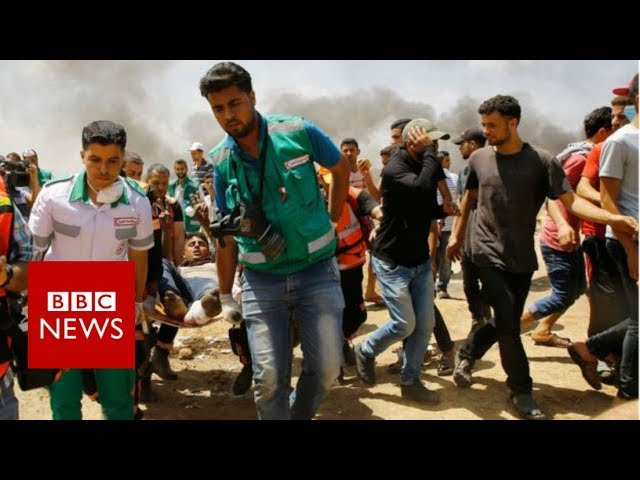 Gaza: Death toll rises to 52  - BBC News