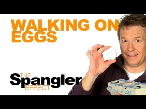 The Spangler Effect - Walking on Eggs Season 01 Episode 43