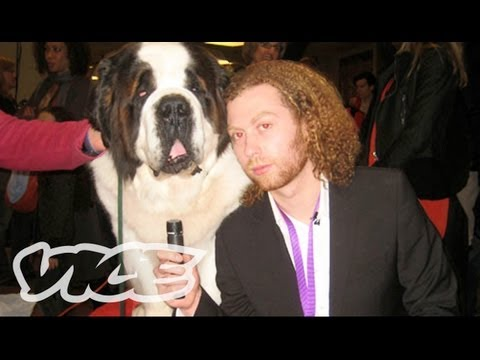 westminster-dog-show-on-acid.html