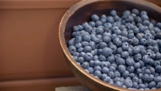 How to Grow Blueberries | Mitre 10 Easy As