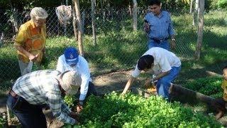 Desarrollo sustentable y Huertos familiares