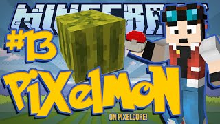 INTRODUCING THE MELON.. | Minecraft: Pixelmon Mod w/ DanTDM! [#13]