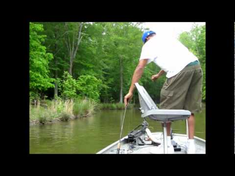 Fishing report - Bass Fishing on Randleman Lake North Carolina Video