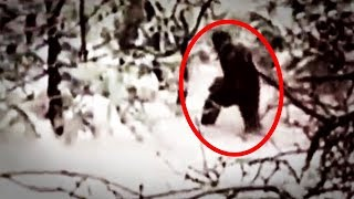 5 Abominable Snowman Caught On Camera & Spotted In Real Life!