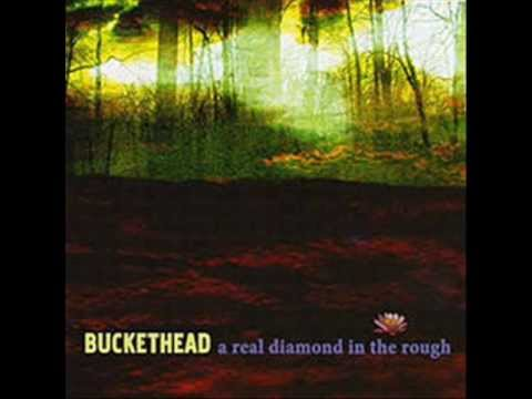 Buckethead - A Real Diamond In The Rough