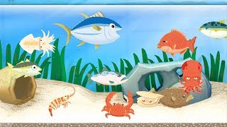 Bắt Cá Làm Sushi Cay Cấp Độ 20 – Game Vui Cho Bé