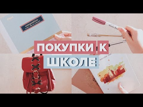 BACK TO SCHOOL 2017 // ПОКУПКИ КАНЦЕЛЯРИИ К ШКОЛЕ